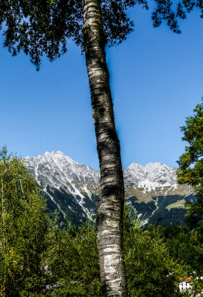Innsbruck-8